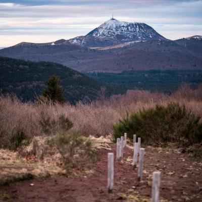 Trail vulcain 2018 p verticale t nalet 2359